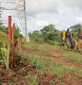Beneficiaries passing Beira Power Line in Mozambique, HALO Trust