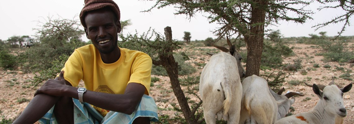Beneficiary Farmer in Somaliland, HALO Trust