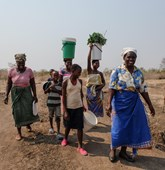 Zimbabwe women and children cross land to fields, HALO Trust.